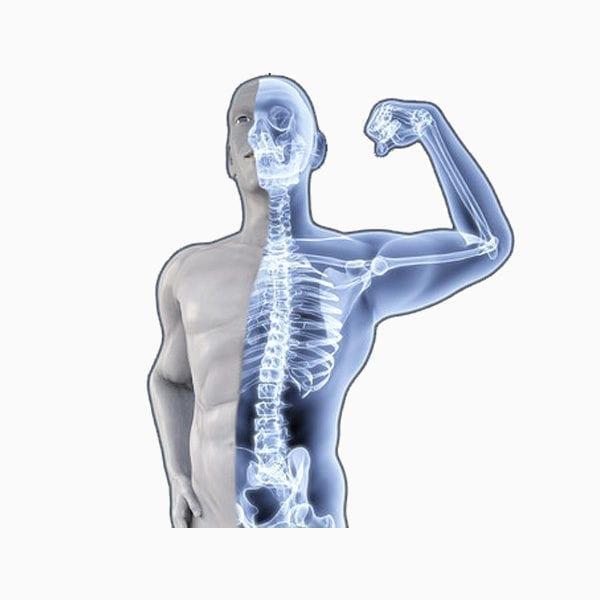 Bone Mineral Density Test- Bone Care